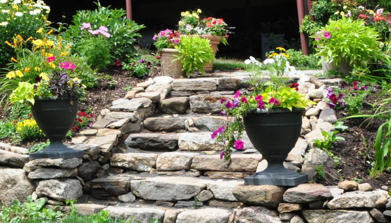 container-gardening-home-staging-130