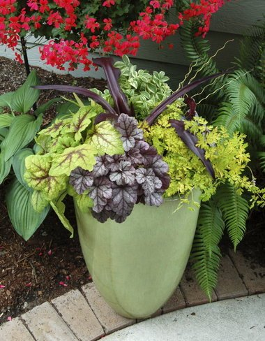container-gardening-home-staging-132