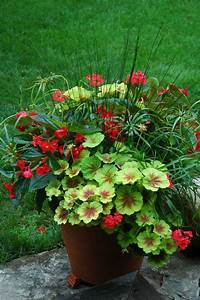 container-gardening-home-staging-134