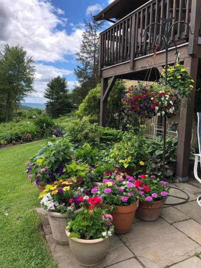 container-gardening-home-staging-137