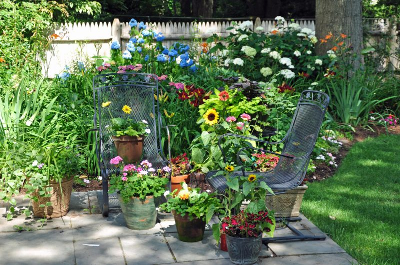 container-gardening-home-staging-141-scaled