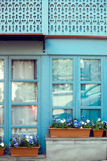 container-gardening-home-staging-30