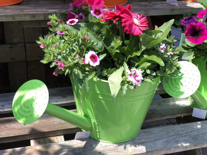 container-gardening-home-staging-36-scaled