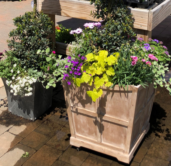 container-gardening-home-staging-44