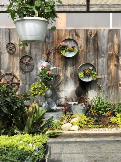 container-gardening-home-staging-58-scaled