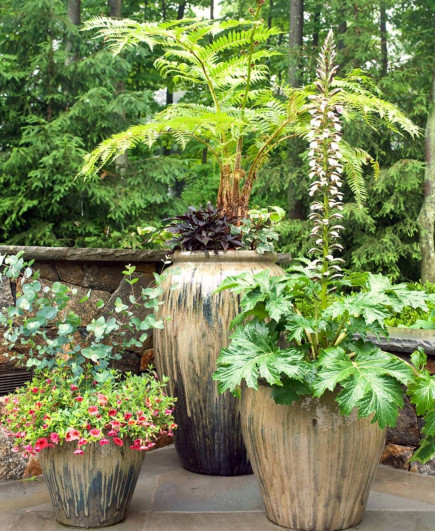 container-gardening-home-staging-9-1
