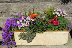 container-gardening-home-staging-11
