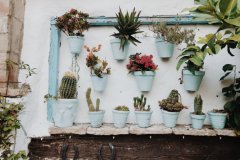container-gardening-home-staging-24