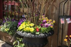 container-gardening-home-staging-39-scaled