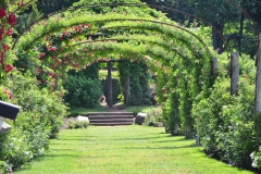elizabeth-park-rose-gardens-west-hartford (14)