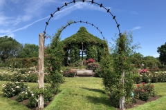 elizabeth-park-rose-gardens-west-hartford (21)