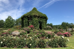 elizabeth-park-rose-gardens-west-hartford (26)