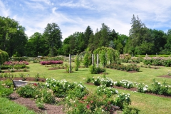 elizabeth-park-rose-gardens-west-hartford (3)