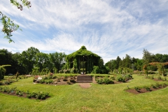 elizabeth-park-rose-gardens-west-hartford (34)