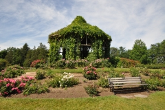 elizabeth-park-rose-gardens-west-hartford (36)