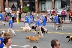 Park Road Parade West Hartford CT (201)