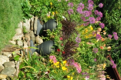 September Blooming Plants (279)