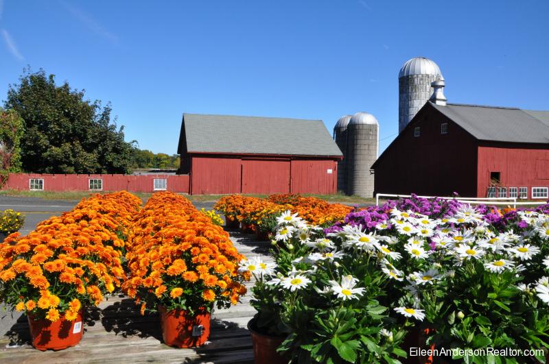 Tulmeadow Farm, Simsbury CT