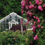 Rose Gardens of Elizabeth Park