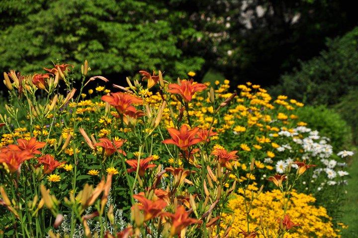 Gardens at Elizabeth Park