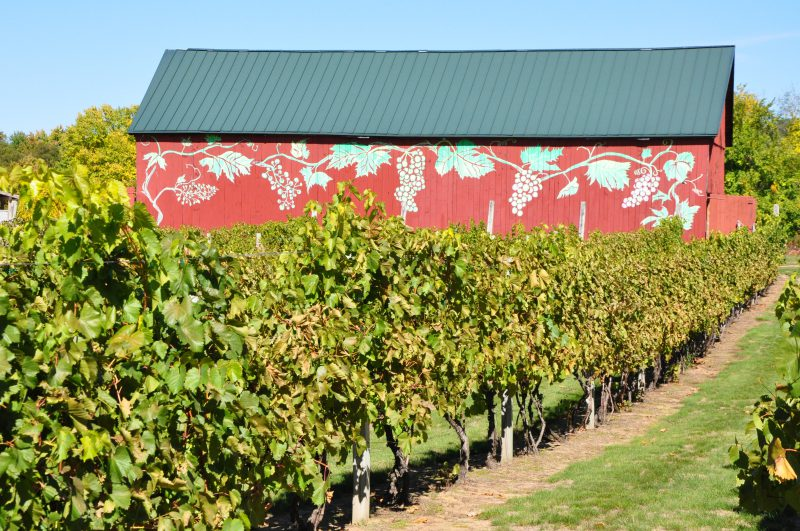 Rosedale Farms and Winery