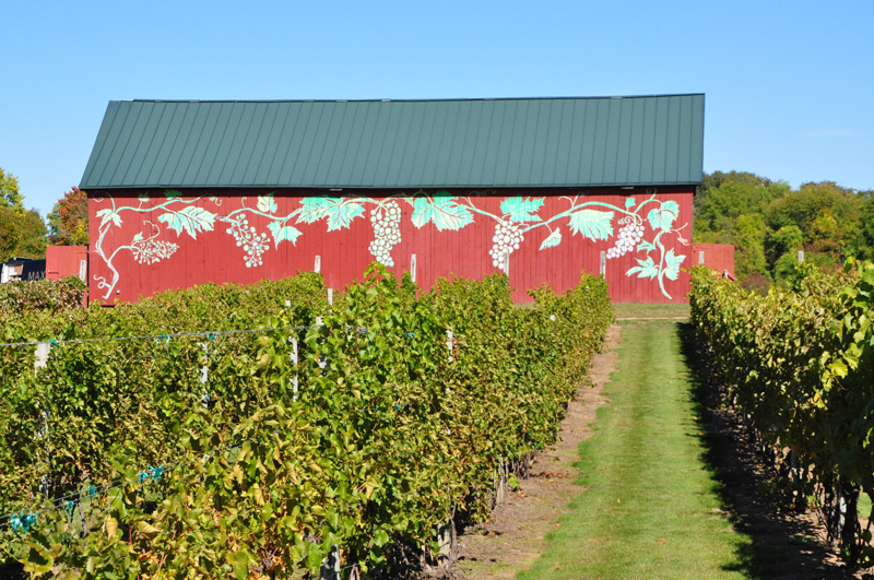 Rosedale Farm & Winery