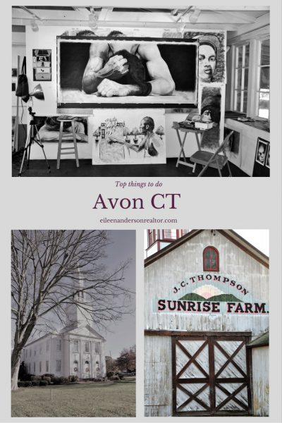 Things to do Avon CT realtor real estate Farmington Valley