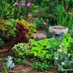 Master Gardener Eileen Anderson