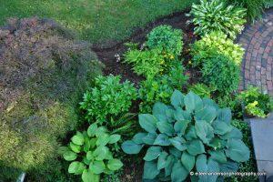 Gardens by Eileen Hostas
