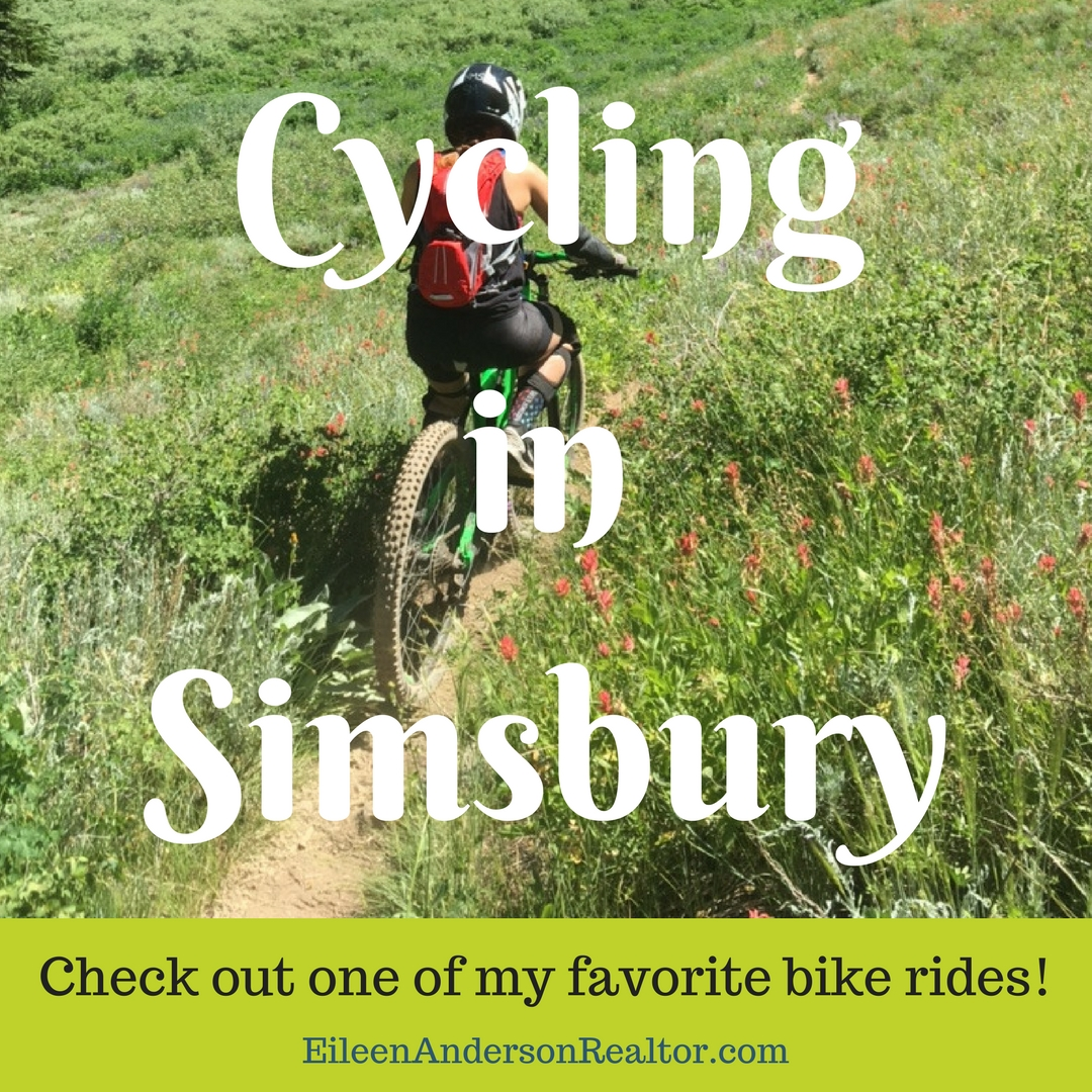 Cycling in Connecticut, Mountain Biking, things to do in Connecticut, CT Realtor