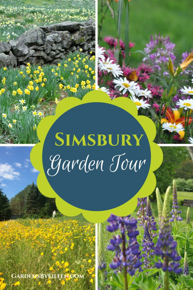Garden Tours, Simsbury CT, images of gardens,