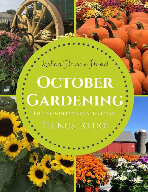 October Gardening Checklist