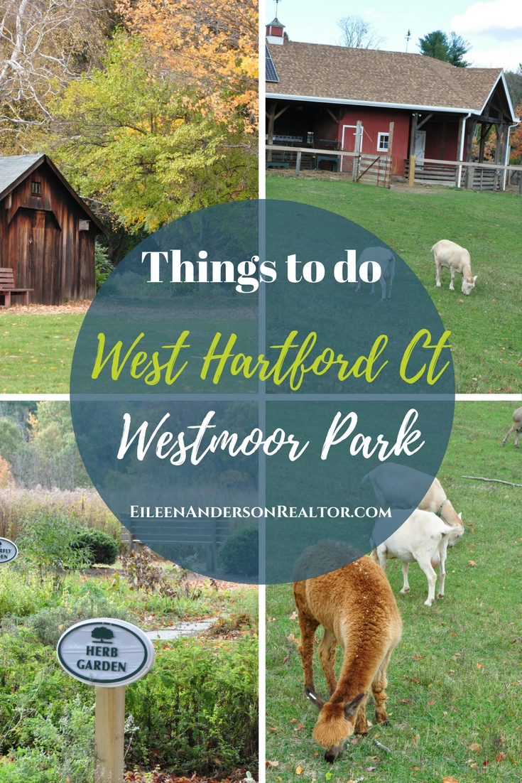 West Hartford with Kids Westmoor Park