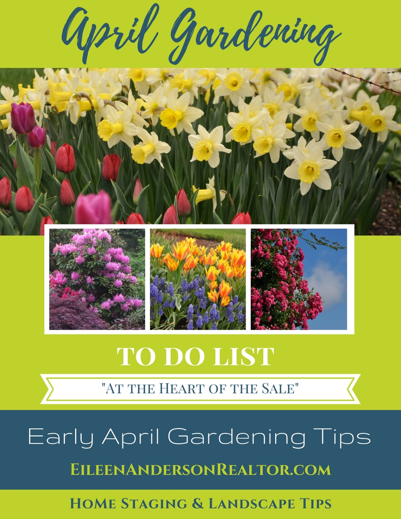 Early April Garden Maintenance DIY, Home Maintenance, Home Improvement, Garden tips, Landscape design, Home Staging, real estate sales
