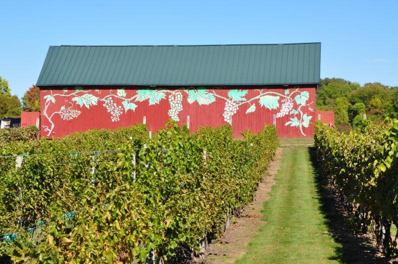 Rosedale Vineyards, Simsbury, CT