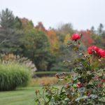 Gardens 208 Westledge