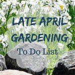 late-april-gardening-checklist
