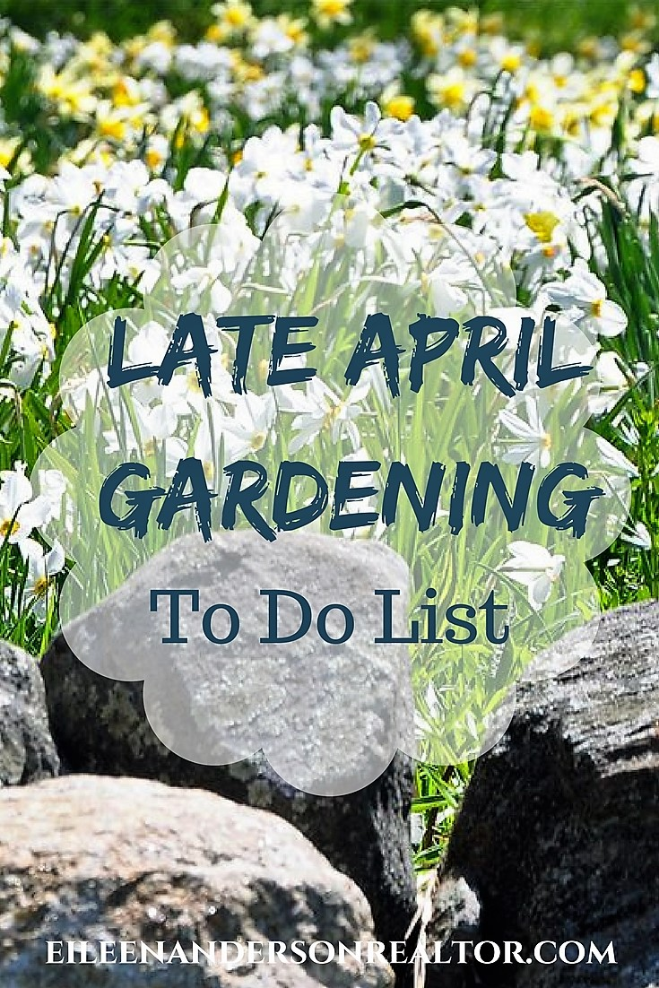 late-april-gardening-checklist
