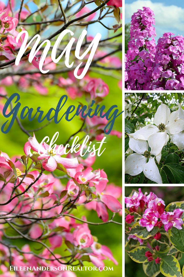 may-gardening-checklist-trees