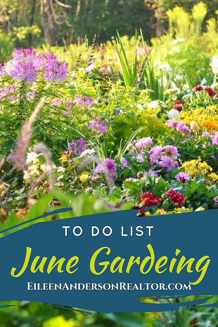 June Landscaping and Gardening Checklist