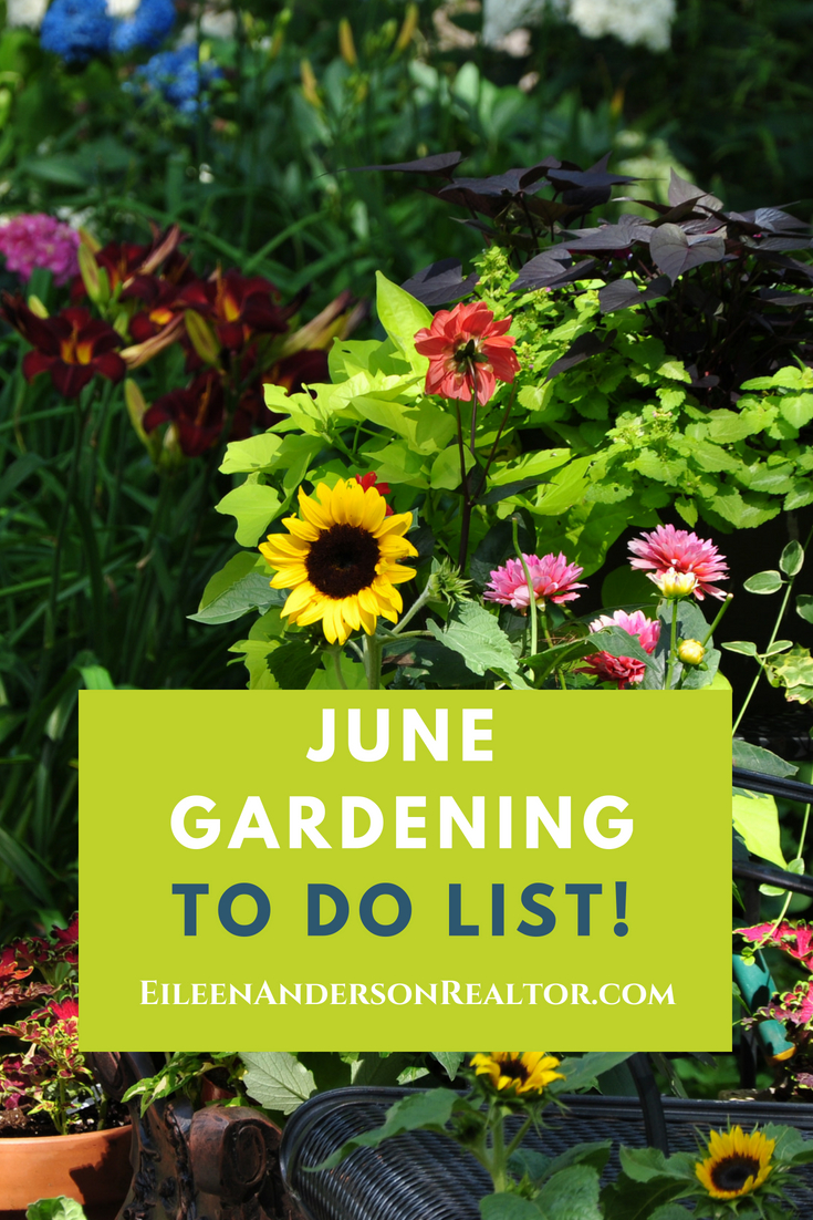 June Landscapeing and Gardening to do List. Home Improvement, DIY, Landscape Design, Gardening Tips, June Gardening to do List, Home Staging, Outdoor Living, Real Estate, Shade Gardens, Lawn maintenance. #gardening #realestate