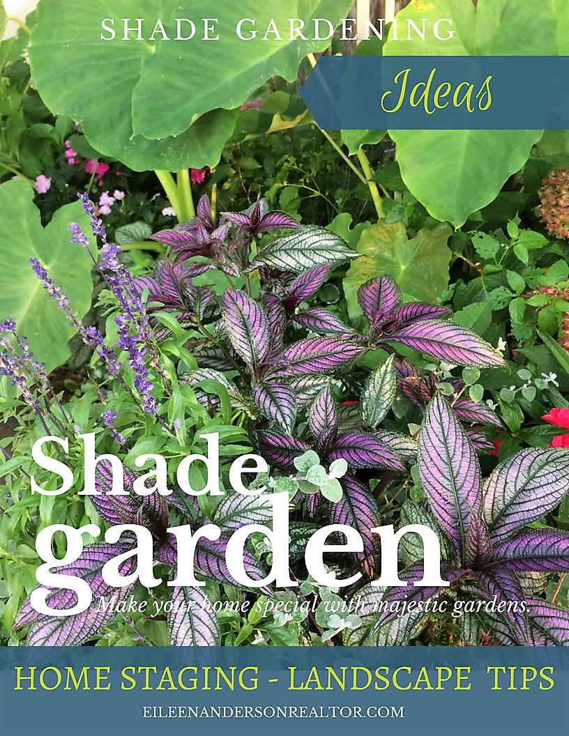 Shade-gardens-that-inspire