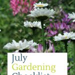 july gardening to do list