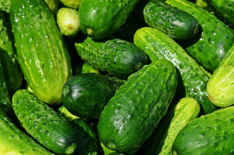 cucumbers july gardening checklist