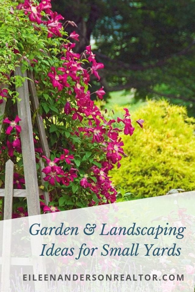 gardens-landscaping-small-yard