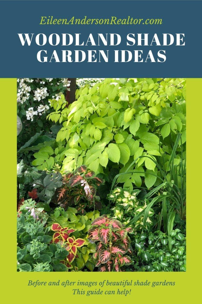 woodland shade garden ideas