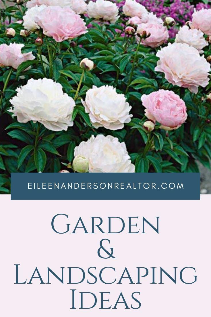 garden-design-landscaping-ideas
