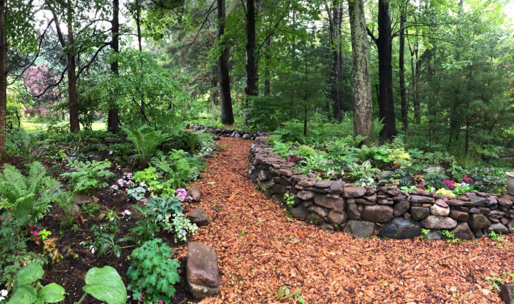 perennial gardens - woodland shade garden
