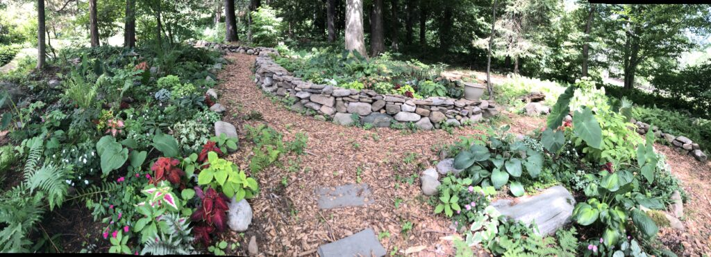 After picture shade garden